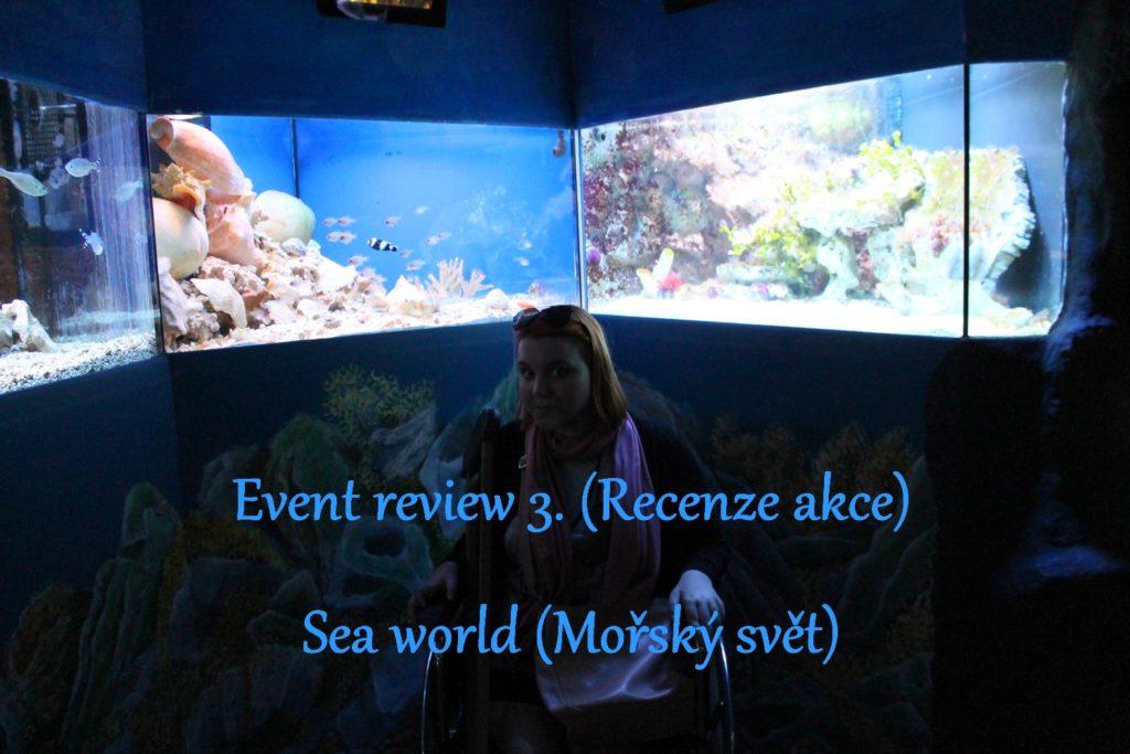 sea world prague animals mořský svět praha zvířata fish ryby