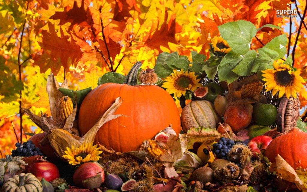 Autumn decorations podzimní dekorace