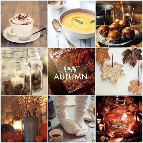 My life update autumn aktualizace mého života podzim 2015